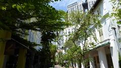 P1060913 (kfcatles) Tags: sun port singapore asia southeastasia chinatown gallery capital national cbd hdb equator pinnacles pagar tanjong