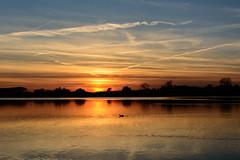 evening descends (stevefge (away travelling)) Tags: sunset sky sun sunlight water netherlands reflections sundown nederland weurt grindgat nederlandvandaag reflectyourworld