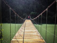 Congost de Mu, puente colgante (efe Marimon) Tags: primavera puentecolgante amapolas alosdebalaguer riosegre congostdemu appleiphone4s felixmarimon