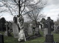 cimitero (daniel gigliotti2012) Tags: xpro fuji horror fujifilm pp cimitero ruby3 xphotographer xpro1 xf18 xf18mm