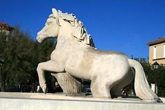 Les Saintes-Maries-de-la-Mer (Charles.Louis) Tags: cheval pierre paca provence camargue lessaintesmariesdelamer