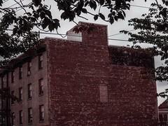 bricked (Eldon Underhill) Tags: bricked may2016