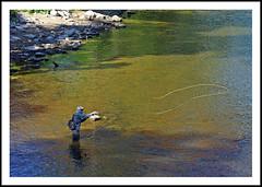 Casting a Line - Huron River in Ypsilanti, Michigan (sjb4photos) Tags: michigan ypsilanti washtenawcounty huronriver fisherman casting