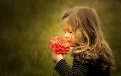Precious Fragrance (Beln Thomas) Tags: portrait people girl rose child precious