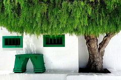 Face of Nature (Ingrid Lutz) Tags: lanzarote greentree natureandarchitekture minumentoalcampesino