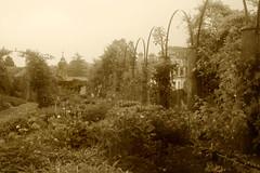 garden (Caerphilly Keeper -AKA Nick) Tags: home rain gardens wales south cardiff edwardian 1920 dyffryn stately
