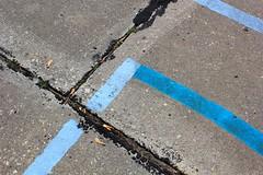 BlueLine (TWO7rabbit) Tags: toronto abstract blueline pavement abstractphotography photobybrianswyatt patterncolour woodbineashbridgesbaypark derelictsplashpad