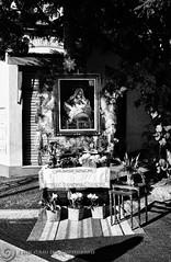 DSC05434 (O KDUKO) Tags: street art arte religio sonyilce3000