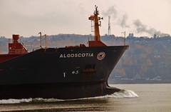 Algoscotia (Nicober!!!) Tags: canada river ship quebec transport stlawrence stlaurent tanker fleuve algoma petrolier oilchemical algoscotia