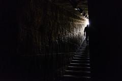 egy.edfu.032716_OMM6558 (ommphoto) Tags: antiquity boat cruise dhabiya edfu edfutemple egypt egyptian monument passageway temple tourism egy ommphoto stairs luxor