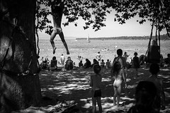 Lac Lman, Genve (mikaelivanroost) Tags: trees summer playing beach kids children rouge lac climbing enfants t lman swimm