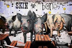 Upfest (Birmingham Phil) Tags: upfest upfest2016 bristol graffiti streetart canz stickups stencils bedminster graf