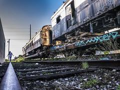 Abandoned Train, Miami (danperezfilms) Tags: miami abandoned train