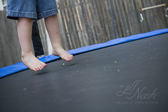 219/366 (grilljam) Tags: seamus 4yrs summer august2016 trampolinefun timetobesilly andgetaworkout