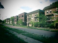 Meet the Neighbors. (david grim) Tags: eastcleveland oh ohio cuyahogacounty streetphotography