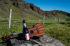 Musica e bollicine (LiveToday84) Tags: ukulele iceland music fun chandon champagne celebrating anniversary party adventure discovery