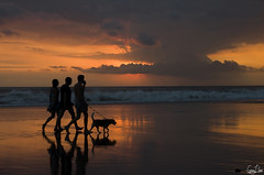 Coucher de soleil  Bali (Rosca75) Tags: indonesia beach sunset dog bali kuta beautiful sea seaside ocean reflections walking walkonthebeach clouds color colordiversity