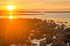 (yuriye) Tags: red yuriye sunset sun orange gold sea seascape landscape reflection ray rays sky cloud stone whitesea water island horisont           muksalma