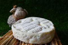 Pérail (Ricard2009 (Martí Vicente)) Tags: cheese queso queijo sir fromage ost formaggio sajt kaas チーズ caws сыр formatge peynir gazta 奶酪 τυρί جبنة perail גבינה сирене brânză sūris ilobsterit