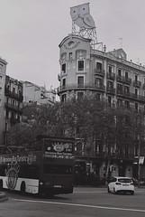 Owl (Gonzalo Ribas) Tags: barcelona bw espaa white black building film me 35mm de spain espa