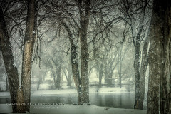 (Chains of Pace) Tags: park trees lake snow storm oklahoma landscape unitedstates sony western panhandle guymon