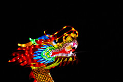 ChinaLights_Dragon head fully light (MelisaTG) Tags: nightphotography utrecht thenetherlands canon600d chinalightsexpo chinalight030