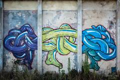 Ancienne usine de traitement de poissons  Aveiro - Portugal ([ Vincent Leroux Photo ]) Tags: voyage trip urban portugal wall graffiti factory tag graf dessin mur usine aveiro urbex