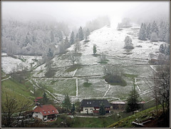 When the colour escapes into the sky (pergi28) Tags: winter snow fog forest landscape farm blackforest münstertal