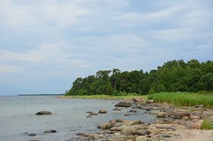 Kaberneeme (anuwintschalek) Tags: wood sea summer see nationalpark estonia sommer baltic ostsee mets meri itmeri eesti lahemaa suvi estland fores lahemaarahvuspark kaberneeme rahvuspark lnemeri d7k nikond7000 18140vr
