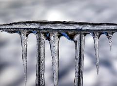 Icy Fencing