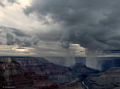 local rain shower (louise peters) Tags: grandcanyon rainshower regenbui kloof canyon colorado arizona amerika america usa vs verenigdestaten thestates nationalpark rain rainy regen