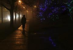 Home for Christmas (Doris Burfind) Tags: christmas street people urban night lights georgetown