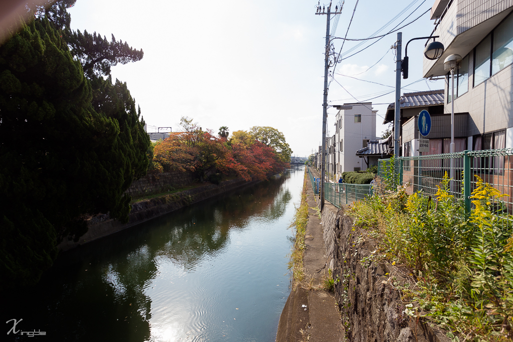 20141107-_MG_4728.jpg