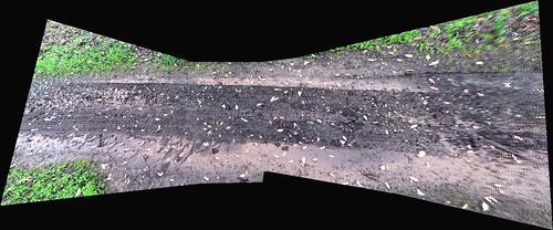 Chocolate Mud Puddle