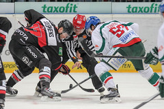 """DEL15 Kšlner Haie vs. Augsburg Panthers • <a style=""""font-size:0.8em;"""" href=""""http://www.flickr.com/photos/64442770@N03/16114755848/"""" target=""""_blank"""">View on Flickr</a>"""
