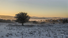 First things first. (alundisleyimages@gmail.com) Tags: winter sky panorama mist snow tree weather wales sunrise landscape outdoors openspaces welshhills
