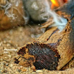 Nature Fire Photo Photography KSA Wood     (photography AbdullahAlSaeed) Tags: wood nature fire photography photo   ksa