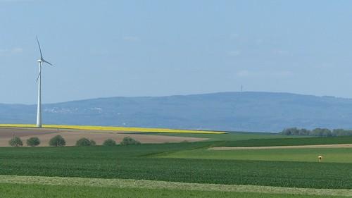 Blick zum Taunus über den Rhein