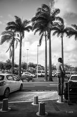 t'es o ? (Jack_from_Paris) Tags: street sun tree mobile clouds de soleil airport call  phone noiretblanc palm le pointe gr monochrom capture nuages ricoh lr palmier guadeloupe tourisme gwada plots pitre tlphone touriste aroport apsc nx2 raizet r0001623