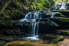 IMG_8677 (gsreejith) Tags: blue mountains waterfall waterfalls cascades leura