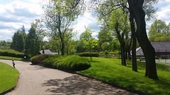 #alexandra park #oldham #beautifull (amileighhodges) Tags: alexandra oldham beautifull