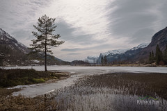 Epelslandsvanet Thaw (http://www.richardfoxphotography.com) Tags: trees lake snow mountains tree norway frozen fjord epelslandsvanet