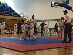 stefanou_15_5_2016_knockdown_180