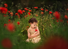 Poppy Garden (Portraits by Suzy) Tags: las vegas flowers red portrait flower color green girl beautiful field childhood by portraits canon garden happy toddler warm pretty texas photographer child little suzy georgetown poppy moment mead 6d 200mm