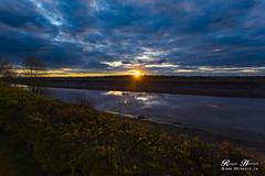 Failing Light (RogerHerrett) Tags: blue sunset yellow clouds canon reflections river gold evening moncton canonef1740mmf4lusm riverview 6d petitcodiacriver monctonnb monctonnewbrunswick canon1740mm canonef1740mmf4 canon6d canoneos6d monctonnewbrunswickcanada riverviewnb riverviewnewbrunswickcanada