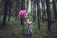 """Tall and elegant, she grew, as she looked upon me."" (AmyFaithPhoto) Tags: conceptual forest girl dress flower pink trees grass blonde small giant dark mystical mysterious moody lost proud tall tiny person elegant portrait painterly"