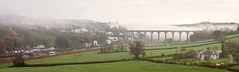 Calstock (s.pither) Tags: calstock cornish cornwall fog landscape mist panorama river tamar viaduct microsoft ice