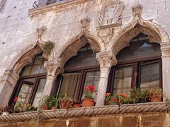 Triforium-Porec-Istria (frenziM) Tags: flowers window architecture fleurs fenster blumen architektur fentre porec istria triforium