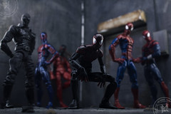 Spider-Verse Squad (advocatepinoy) Tags: art comics actionfigure photography noir spiderman peterparker collection actionfigures comicbooks miles marvellegends squad marvel marvelcomics avengers dioramas morales 2099 ultimates ultimatespiderman toyphotography toycollection photosetup allnew scarletspider blackspiderman acba alldifferent toyreviews bigbadtoystore articulatedcomicbookart advocatepinoy advocate928 milesmorales pinoytoykolektors spiderverse marvelnow photographyvisualartform ultimatespidermancomicbookseries latinosuperhero