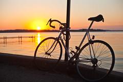 171/366 (local paparazzi (isthmusportrait.com)) Tags: sunset orange lake detail bike bicycle eos 50mm prime chains pod aperture pretty shadows dof bokeh iso400 f14 seat wheels theend chain glowing usm madisonwi cushion ef recovery goldenhour lakemendota 2016 50mmf14usm danecountywisconsin 366project canon5dmarkii localpaparazzi redskyrocketman lopaps isthmusportrait
